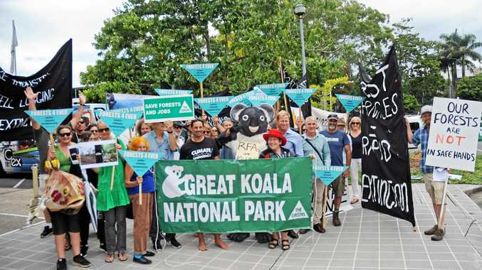 PROTEST: Protesters gathered outside C.ex Coffs in opposition to the Regional Forest Agreements (RFAs).