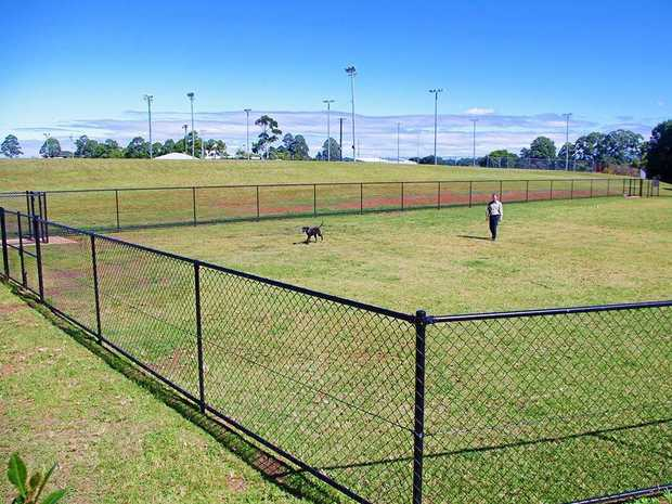 IDEA: There have been calls for fenced off-leash areas with sections for small and big dogs.