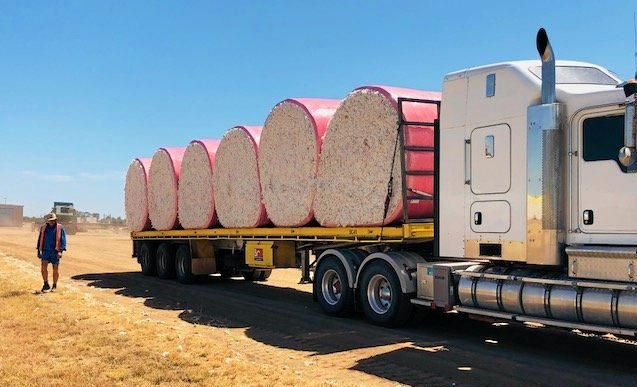IT'S A WRAP: The local cotton fields were scattered with pink as farmers support the McGrath Foundation.