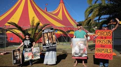 Animal Justice party protesters outside Stardust Circus in Gosford on the NSW Central Coast, Friday January 5, 2018. Picture: AAP /Sue Graham.