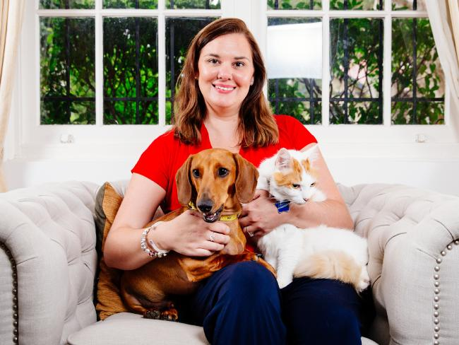 Sydney pet detective Anne Marie Curry, with her dog Arthur and cat Buddy, says instances of stolen pets is on the rise. Picture: Jonathan Ng
