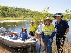 CQ town's excellent drinking water nurtures a rare algae
