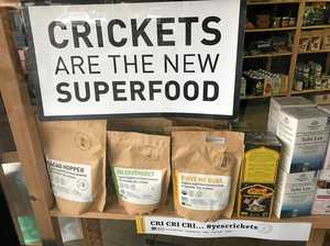 Hmmm crickets ... the latest superfood trend
