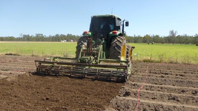 Development of the Pentland Sugar Cane and Super Sweet Sorghum trial site, part of the Pentland biofuel project.