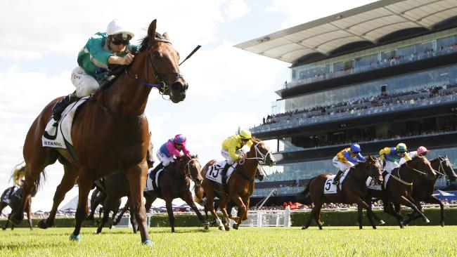 Free Standing won the Country Championships Final at Randwick last year.
