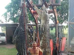 Croc catcher claims salties are getting bigger