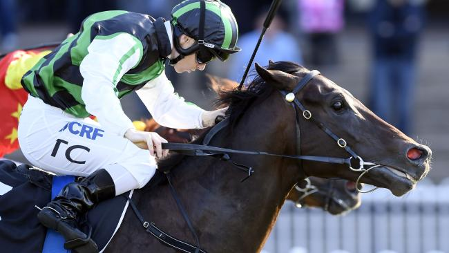 Addictive Nature Race 6 — 3:05PM MONACO CUP — MING DYNASTY QUALITY (1400 METRES). Winner 'Addictive nature' ridden by Tim Clark. Trained by Bjorn Baker. (NEWS CORP/Simon Bullard)
