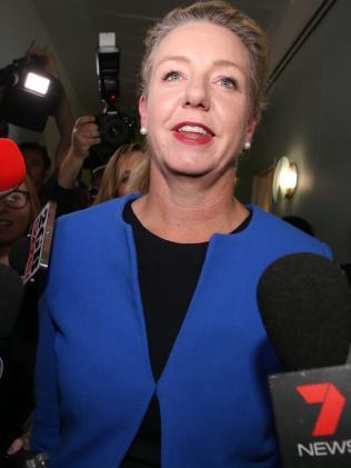 Deputy Nationals Leader Bridget McKenzie. Picture: Supplied