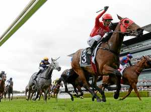 Redzel is a class above others in return to the track