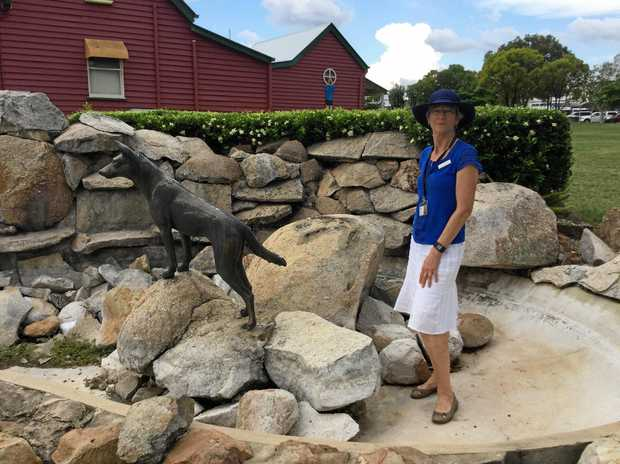 South Burnett councillor Ros Heit is pleased the dingo has been returned.