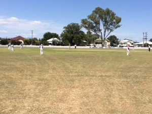 Fergus Connolly bowls for Warwick in Davis Shield cricket