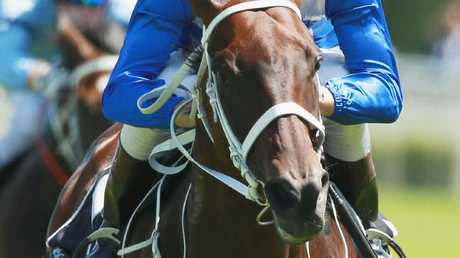 Wonder horse Winx at full tilt on Saturday at Royal Randwick. Picture: Getty Images
