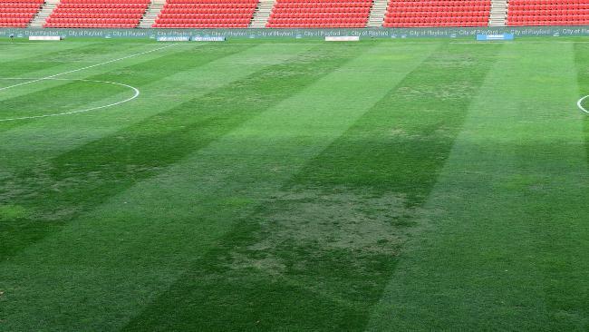 Coopers Stadium. Picture: Bianca De Marchi