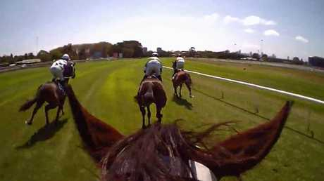 You take the reins: A glimpse at what jockey Hugh Bowman sees when riding our greatest racehorse. Picture: Supplied