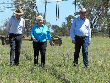 AGRICULTURAL INSPECTION: Prime Minister Malcolm Turnbull, Michelle Landry MP and Deputy PM Barnaby Joyce in Capricornia assessing land that could be helped by the construction of Rookwood Weir.