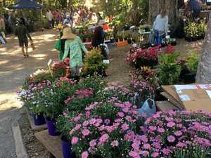 Autumn Plant Fair is coming