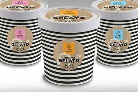 Summer Land Camels gelato.