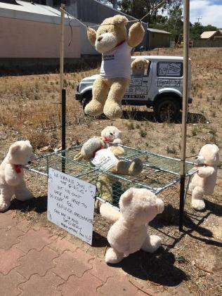 Photos of the teddys, part of a shifting installation of stuffed toys in Kapunda, arranged in their pose just before the vandalism Picture: Alex Boes / Facebook  The aftermath of the vandalism with the three remaining bears left torn and damaged. Picture: Alex Boes