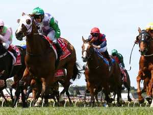 Hayes: My Cup horses were clean