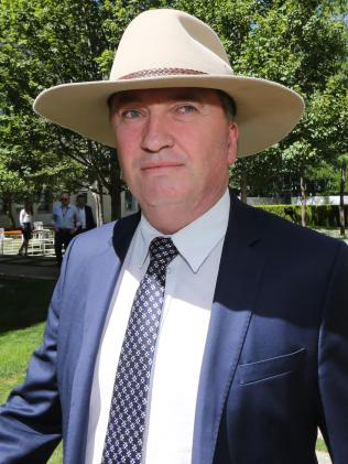 Deputy Prime Minister Barnaby Joyce. Picture Gary Ramage