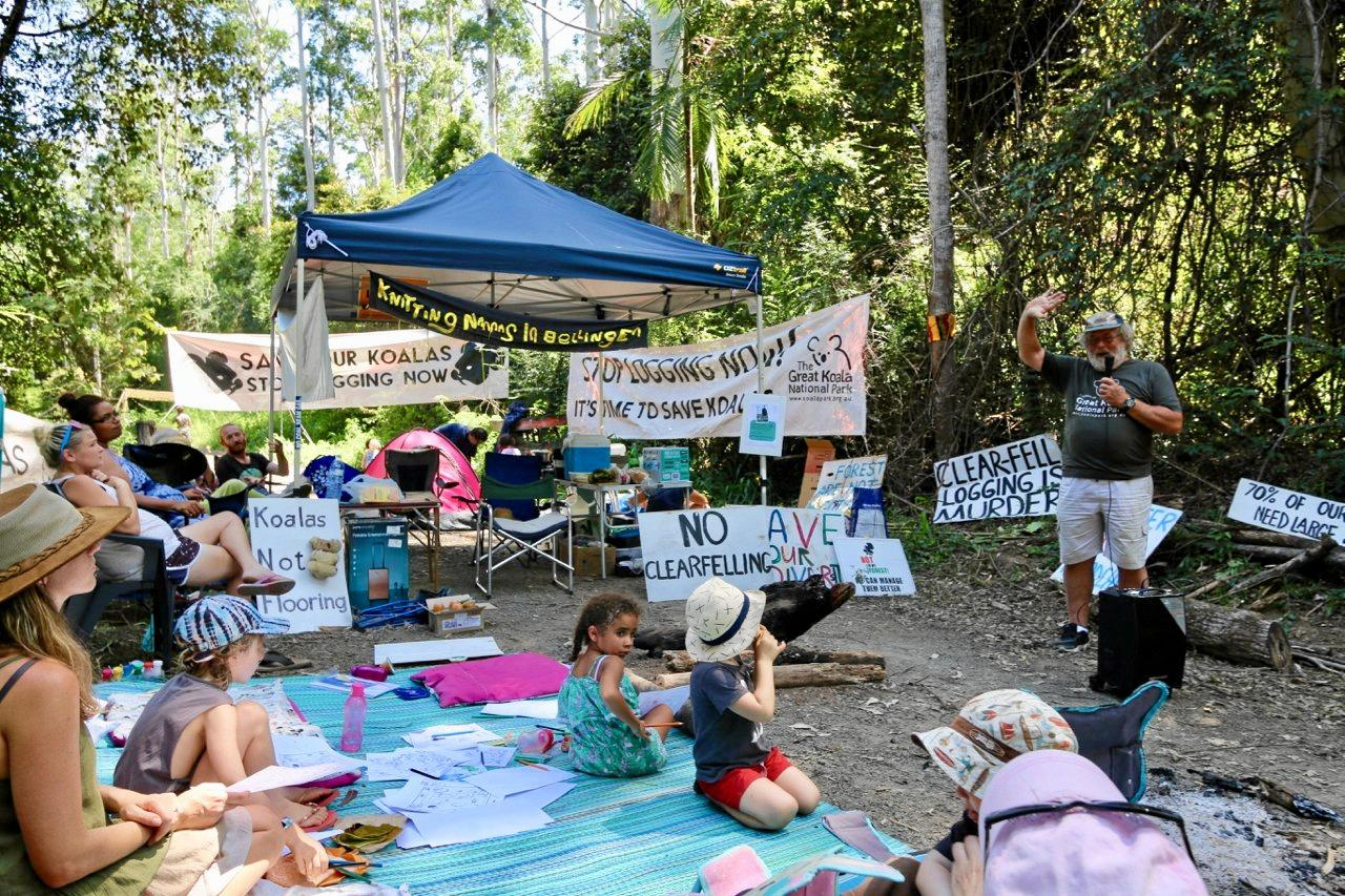 Local environmentalists have cut off road access in attempt to prevent the logging of Gladstone State Forest.