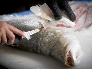 A Raw deal for local fishermen