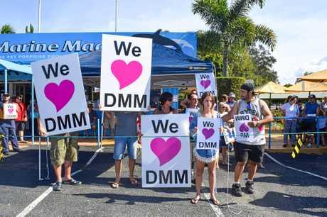 Dolphin Marine Magic protests