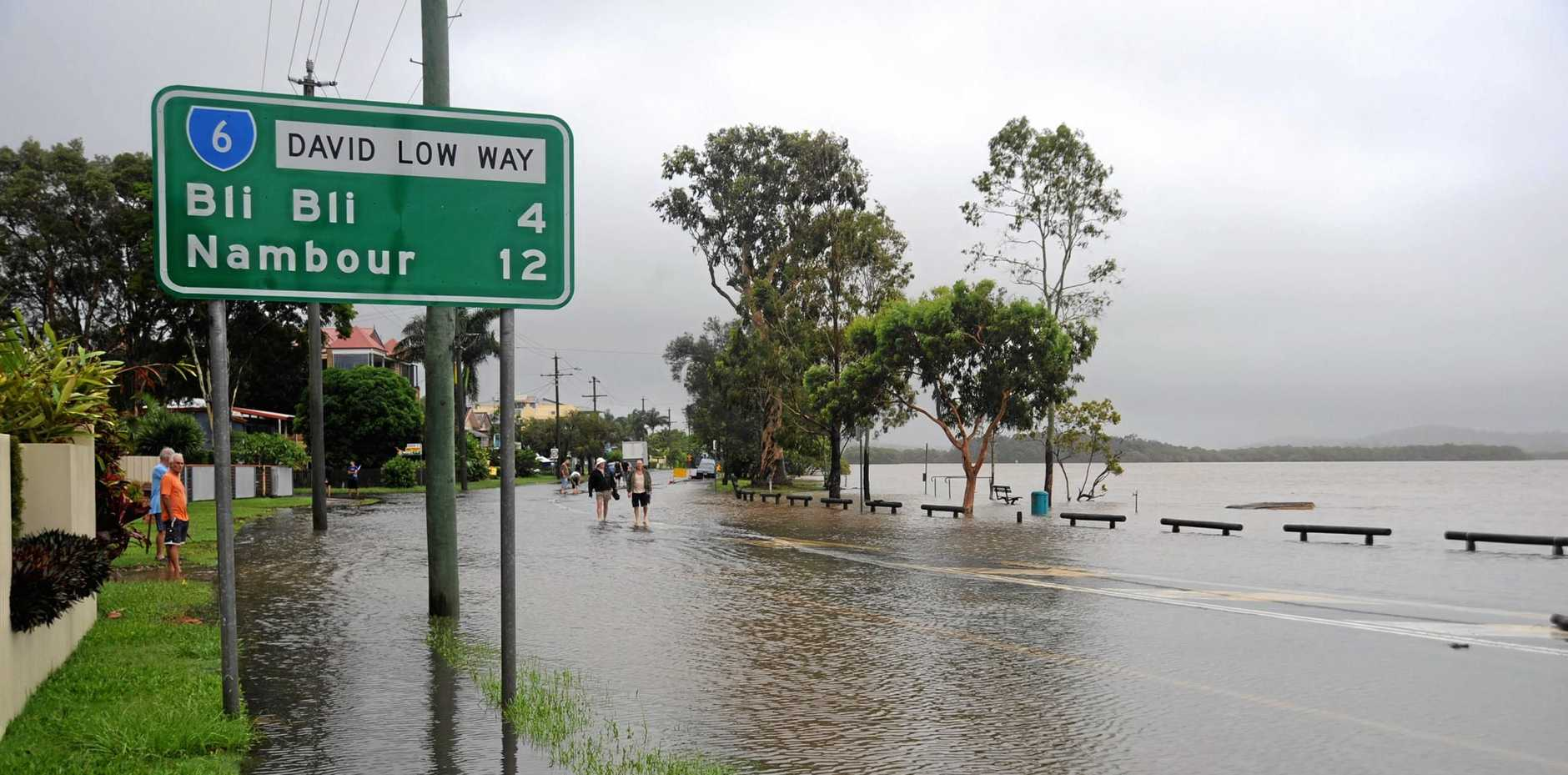 FILE PHOTO: The Maroochy River floods into Bradman Avenue. Photo Warren Lynam / Sunshine Coast Daily