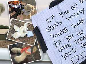 Stolen teddies found in 'mass grave'