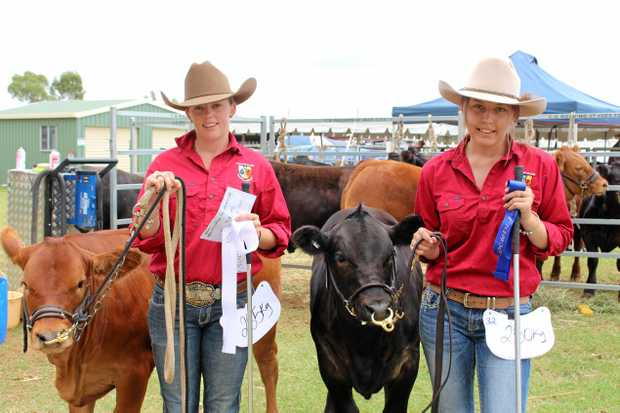 STAR STUDENTS: Scots PGC College agriculture students Bridget Christensen and Briar Densley were proud to represent their school at the Clifton Show with their heifers Wonder Woman and Mini.