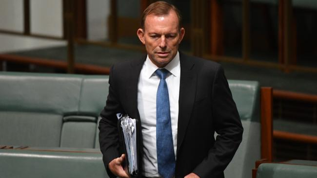 Tony Abbott has launched his most scathing attack yet on Malcolm Turnbull's senior ministers over their criticism of his proposal to cut Australia's immigration rate.