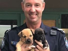 Senior Constable Allen with the two lucky puppies.