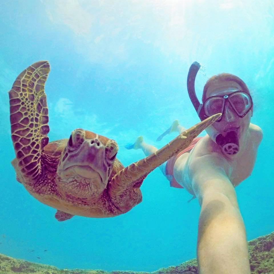 Mark Fitzpatrick swimming and taking photos with a turtle.