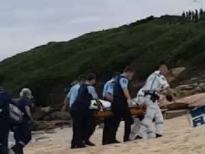 Sydney shark attack 'just 20m from shore'