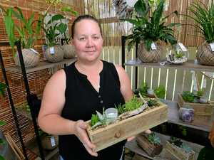 Rocky market business: Small beginnings to bright future