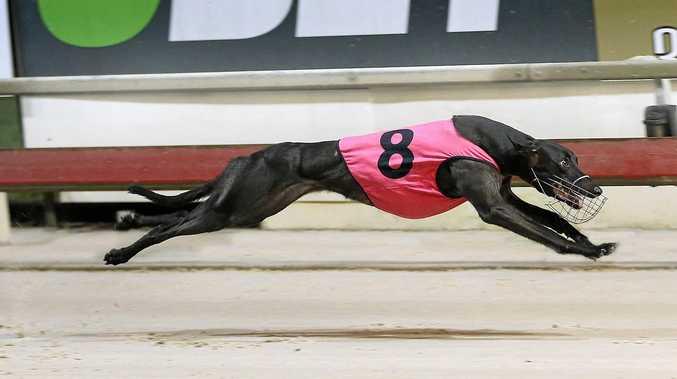 Ipswich winner shares next major wish