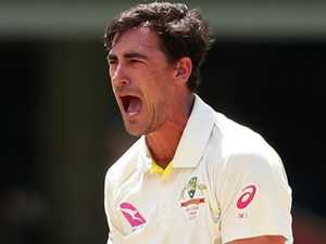 Starc, Marsh send out timely warning to Proteas