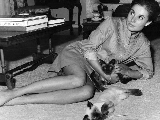 Ainsley Gotto, former prime minister Sir John Gorton's chief of staff with her beloved Siamese cats. Picture: NewsCorp