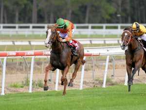 Bellamy duo on track for championships showdown