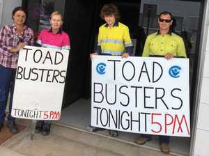 Toad busters - final night tomorrow night