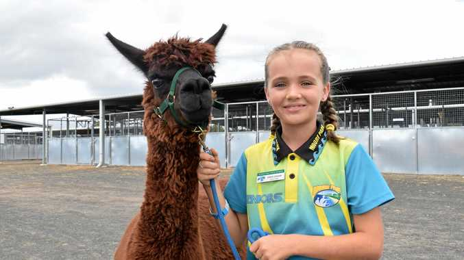 FLUFFY FRIEND: Jordis Graham, of Moore Park State School, with Felix.