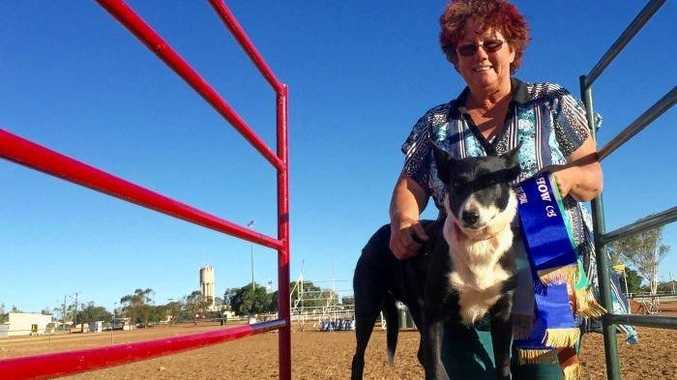NEVER GIVING UP: Denise Hawe and one of her dogs in the training ring.