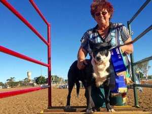 Working dogs help outback woman deal with dementia