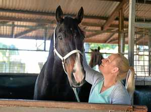 Top Mackay horse trainer charged over high alkaline