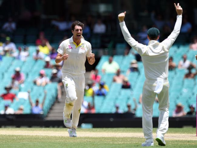 Australia's Pat Cummins (L) celebrates a wicket during the Ashes.