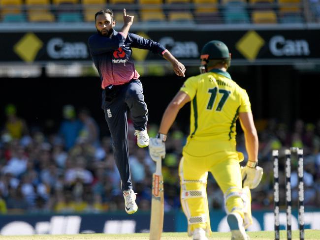 England bowler Adil Rashid dismisses Australia's Marcus Stoinis.