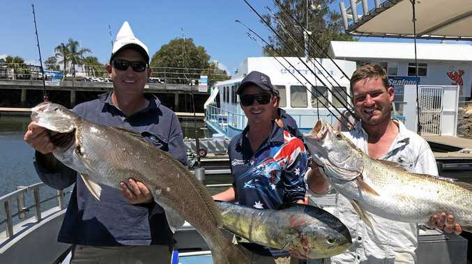 TRIPLE TREAT: It might be the first day of autumn, but the summer catches keep on coming. How about these three Queensland visitors who scored a big haul on a recent trip out with Reel Time Fishing Charters.