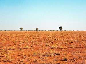 Central West grazier: We're 'trying to survive'