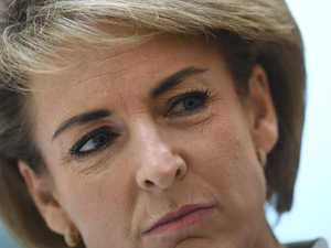 Michaelia Cash hides behind whiteboard to avoid media