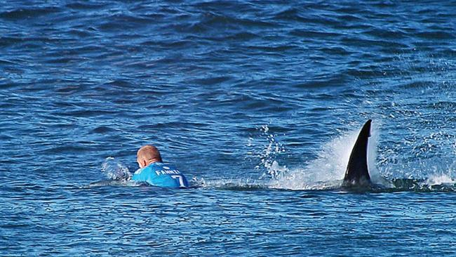 In this screen grab from footage by the World Surf League, Mick Fanning of Australia is attacked by a Shark at the Jbay Open on July 19, 2015 in Jeffreys Bay, South Africa. Photo by WSL/WSL via Getty Images